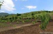 Водохранилище для ирригации построят в Ленингорском районе Южной Осетии