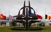 Грузии предложили новый вариант вступления в НАТО